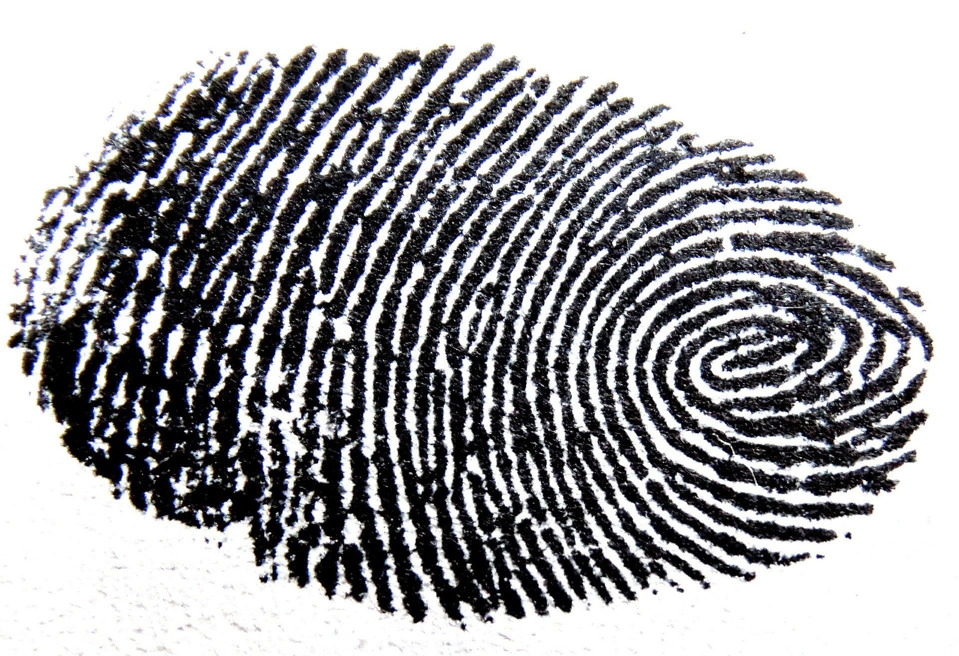 זיהוי טביעות אצבע